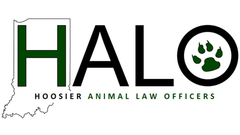Halo Focuses On Training Education To Prevent Animal Abuse In